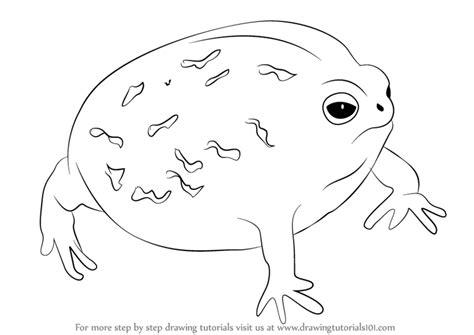 step  step   draw  desert rain frog