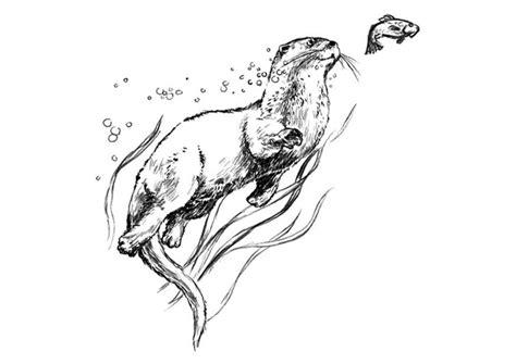 Otter Kleurplaat by Kleurplaat Otter Afb 7531