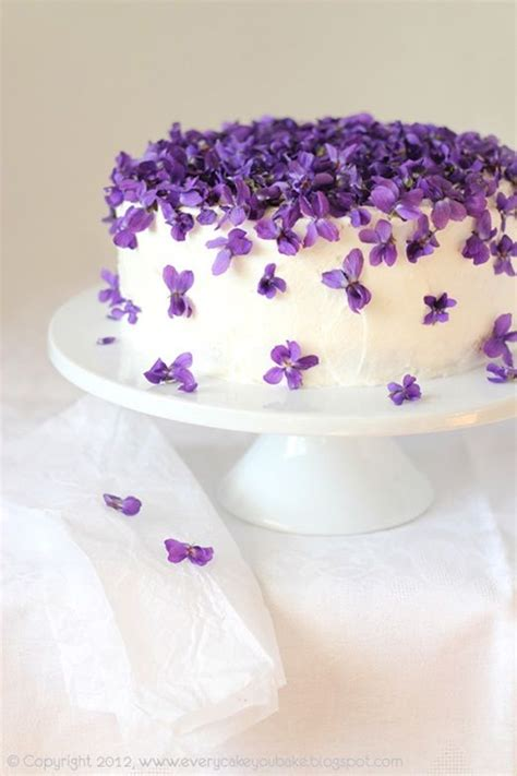 purple violets spring cake pictures   images