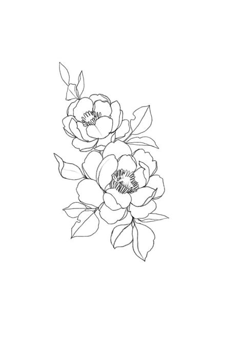 Florals | Flower drawing, Flower sketches, Tattoos