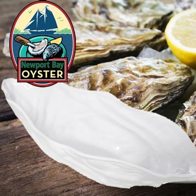 Raw oysters really are aphrodisiacs say scientists (and
