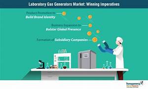 Laboratory Gas Generators Market By Product  Application And Forecast To 2027