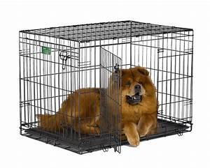 midwest icrate pet crates crate double door 36 inch w divider