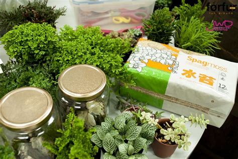 จัดสวนในขวดแก้วขนาดเล็ก เพื่มพื้นที่สีเขียวง่ายๆ   homeEST.com