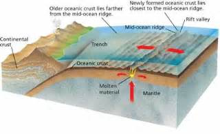 Where Does Seafloor Spreading Take Place Brainly by Continental Drift Plate Tectonics Mr Brennan S Science Page