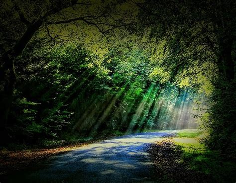 Breathtaking Photos The Sunbeams Natural Beauty