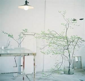 Grünpflanzen Für Innen : simplicit p l a n t l i f ~ Eleganceandgraceweddings.com Haus und Dekorationen