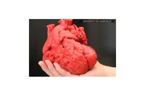 baixar imagens de coração humano 3d
