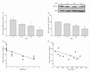 PGC-1α Expression Decreases in the Alzheimer Disease Brain ...