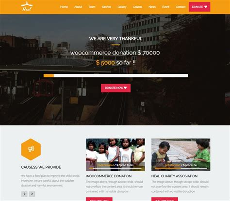 Best Wordpress Themes For Your Charity, Crowdfunding And