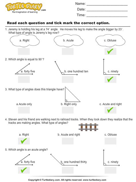 angle classification worksheet turtle diary