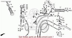 Diagram  Wiring Diagram For Honda Trx250 Full Version Hd Quality Honda Trx250