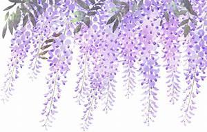 ftestickers flowers border lavender wisteria...