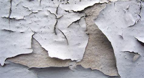 certified asbestos removal mould remediation