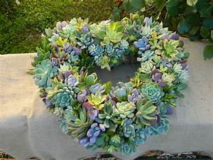 the best ideas for a diy succulent wreath for your garden
