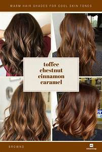 Hair Colors For Your Skin Tone Chart How To Choose The Best Hair Colour From Hair Colour Charts