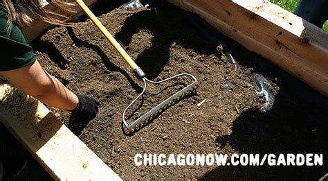 buy garden soil starting a garden where to buy garden soil in chicago