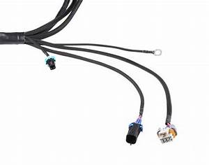 Bmw Wiring Harnes Connector