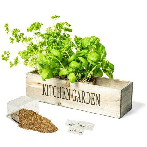 Windowsill Herb Planter by Kitchen Herb Garden Windowsill Planter With Seeds And