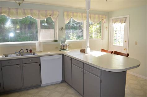 Ideas For Refinishing Kitchen Cabinets - painting kitchen cabinets by yourself designwalls com