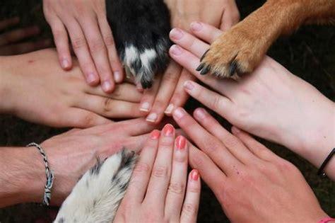 code  ethics  animal communicators janet roper