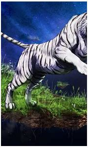 animals, White Tigers Wallpapers HD / Desktop and Mobile ...