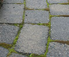 1000 images about garden pavers on concrete