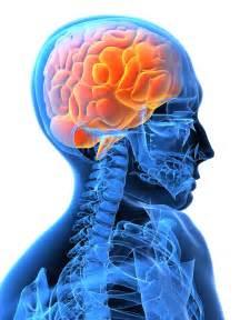 Brain Stem Stroke