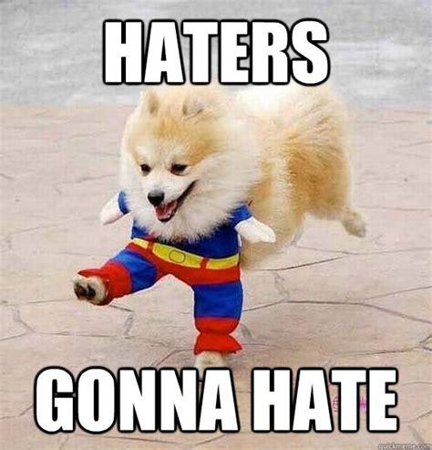 Pomeranian Meme - 10 cute pomeranian memes dogs and puppies