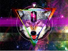 Galaxy Wolf Hipster Hipster triangle galaxy   Hipster Triangle Galaxy Wallpaper