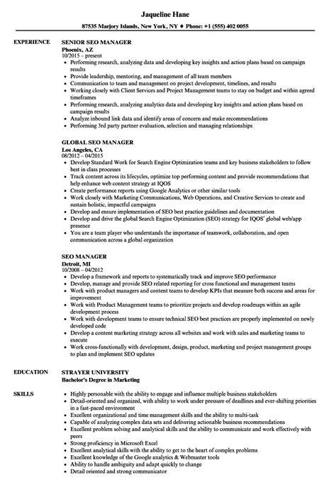 Seo Resume by Seo Manager Resume Sles Velvet