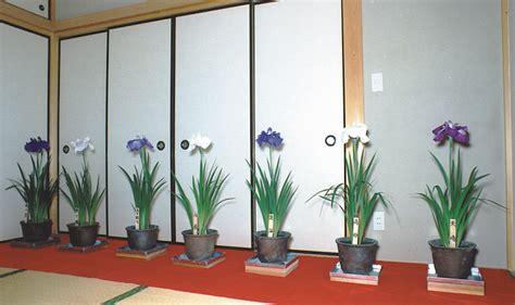 growing with plants hanashobu the of growing and