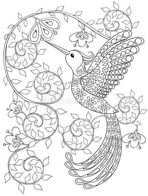 Coloring Page With Hummingbird, Zentangle Flying Bird For Adult Stock Vector - Illustration of