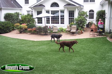Artificial Grass For Dogs Gallery. Glass Oval Coffee Table. Standard Garage Door Width. Modern Fire Pits. Bohemian Room Decor. Ladder Stairs. Front Yard Plants. Modern Dining Tables. Luxury Couches
