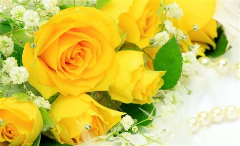 best flower bouquets stunning yellow roses images hd wallpapers