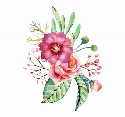 Watercolor Flowers Flower Watercolour Paint Transparent Flores