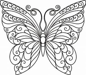 Butterfly, Outline, Svg, File