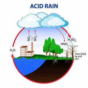 Acid Rain Stock Vector  Illustration Of Dead  Factory