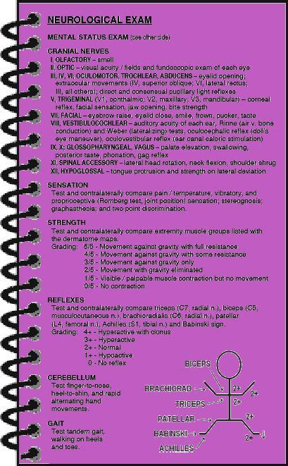 neurological exam maxwell quick medical reference