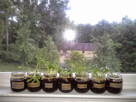 window sill garden windowsill herb garden diy 0 pinterest