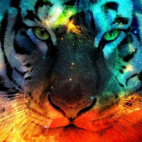 cool animal edits images  pinterest