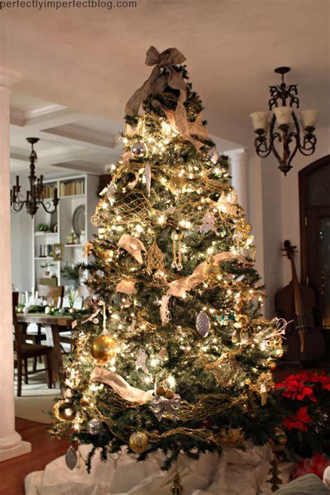christmas tree trees collection  christmas