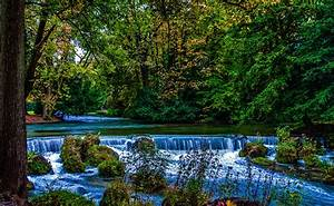 Photo, Munich, Bavaria, Germany, Nature, Waterfalls, Parks, Moss, Trees