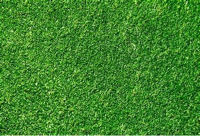 Grass Texture Field Textures Background Golf Seamless