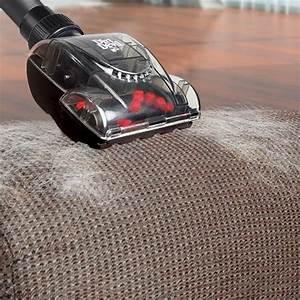 Aspirateur Poil De Chien : brosses d 39 aspirateur entretien des moquettes fauteuils tapis dirt devil wanimo ~ Medecine-chirurgie-esthetiques.com Avis de Voitures