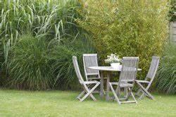 Welche Pflanzen Passen Gut Zu Hortensien : welche pflanzen passen zu bambus ~ Heinz-duthel.com Haus und Dekorationen