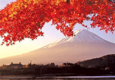 japan discovery bunnik tours