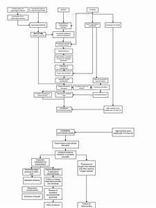 Pathophysiology Diagram