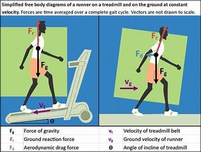 Force Running Physics Treadmill Runner Diagram Much