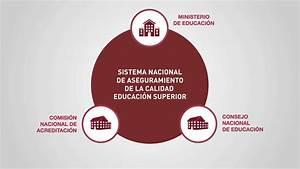 U00bfqu U00e9 Es El Consejo Nacional De Educaci U00f3n
